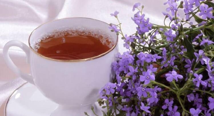 Funda Yaprağı ve Funda Çayı
